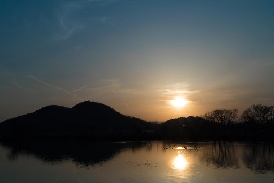 滋賀県 木珠