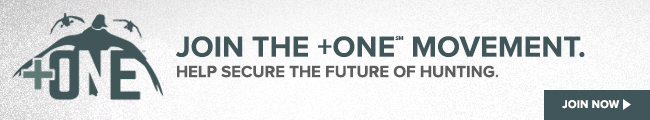 Join the +OE Movement