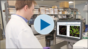 Live cell Assay Automation