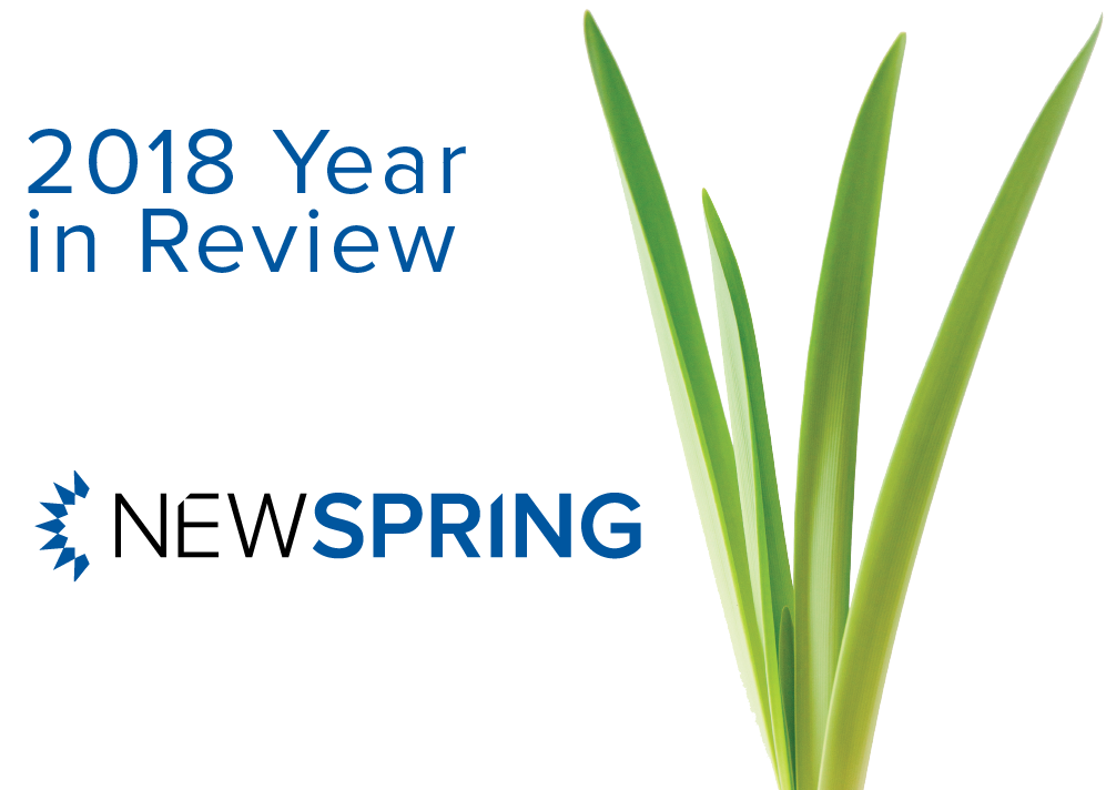 NewSpring's Year in Review