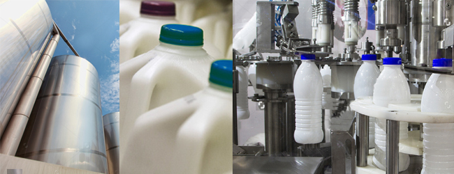 food safety solutions for dairy products