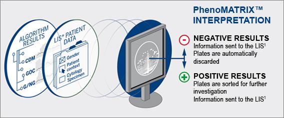PhenoMATRIX® INTERPRETATION - Lab automation module