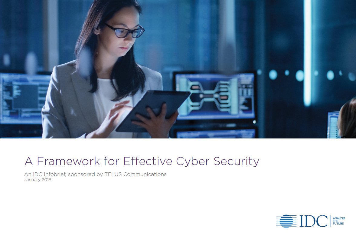 IDC White paper - A Framework for Effective Cyber Security