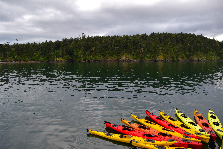 Pacific Northwest Adventure UnCruise Adventures