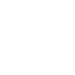 Workday Service Partners