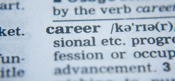 Definition for career