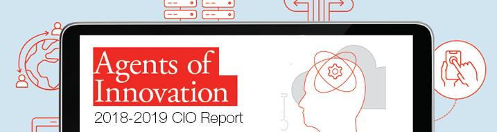 2018-2019 CIO Report