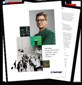 NetApp Master the Cloud White Paper