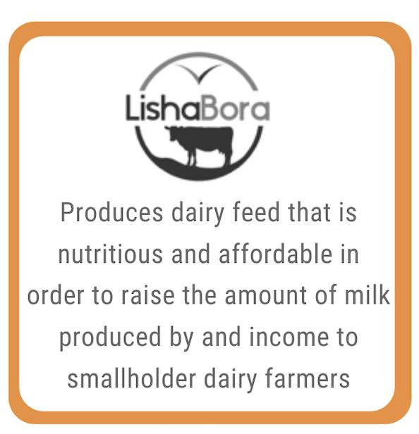 LishaBora - EWB Venture