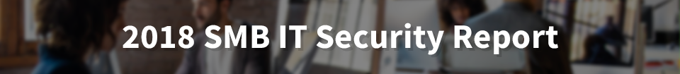 2018 SMB IT Security Report