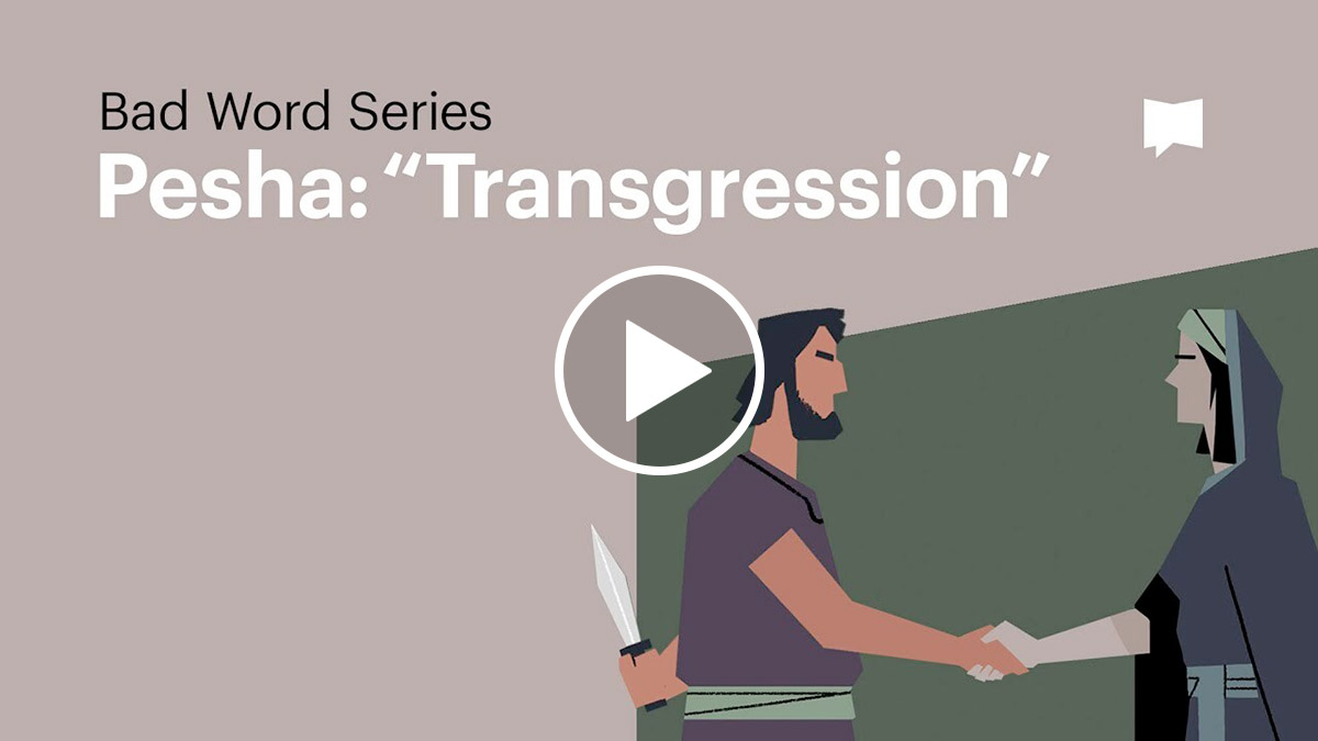 Watch: Transgression