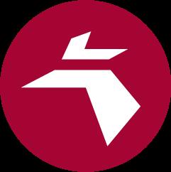 PE Logo Icon