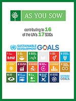 UN SDG Goals Poster