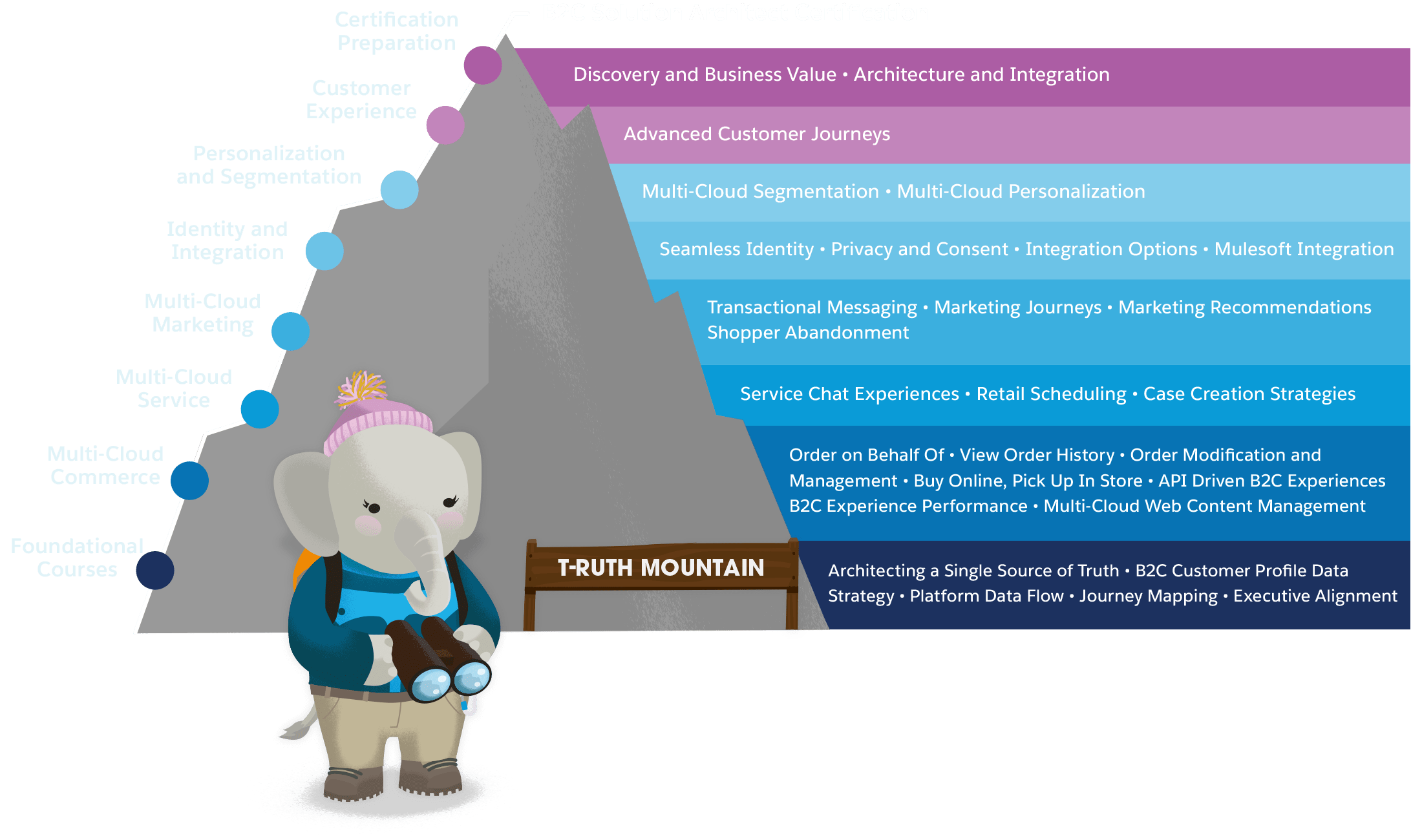 The path to B2C Solution Architect Certification