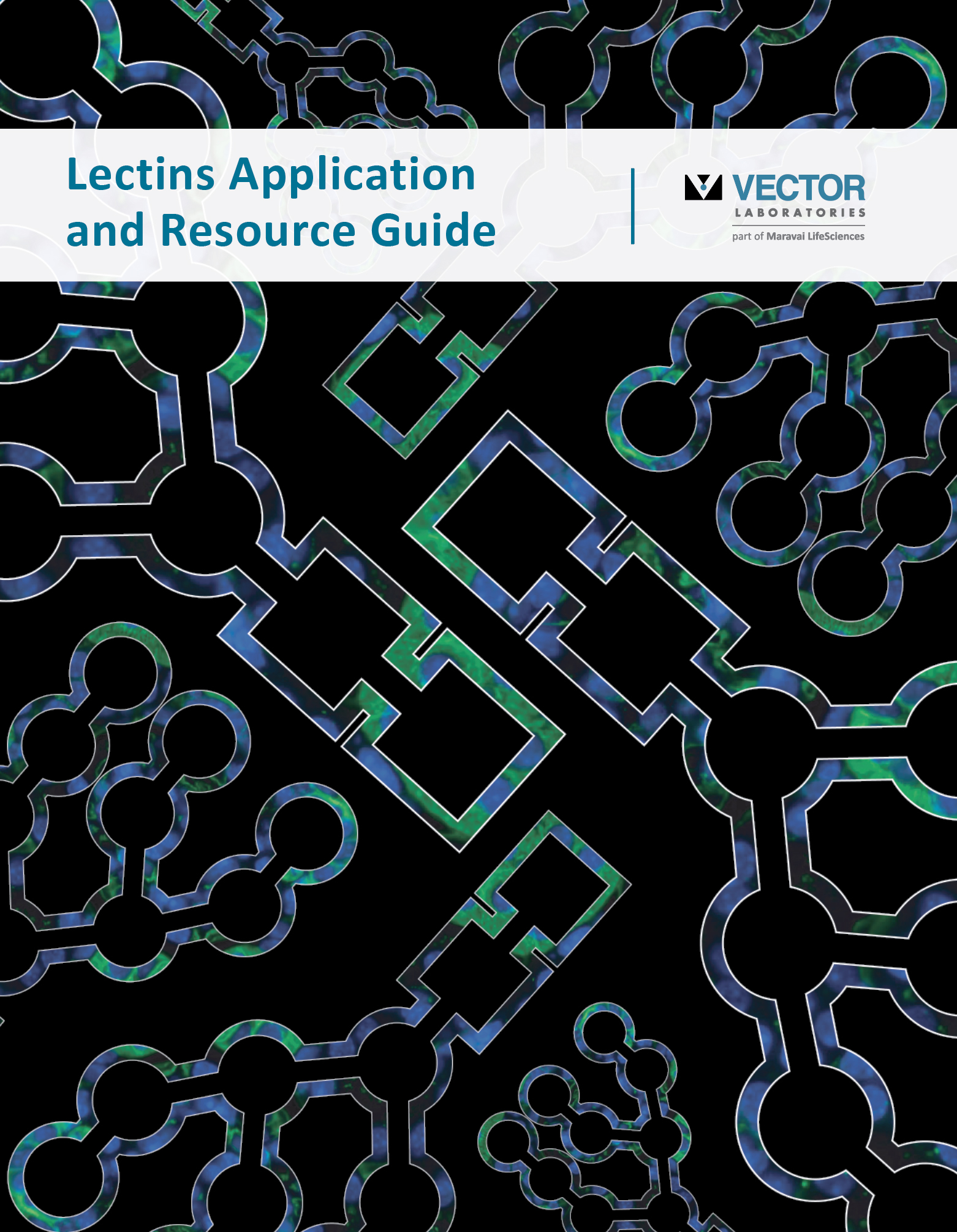 Download our Lectins Application & Resource Guide