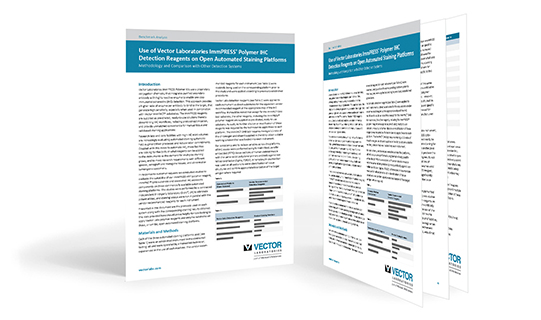 ImmPRESS polymer reagents white paper
