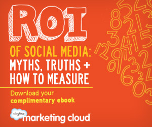 17feb2012ebook - ROI of Social Media Myths - jpg