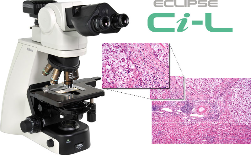 Eclipse Ci-L LED Microscope System