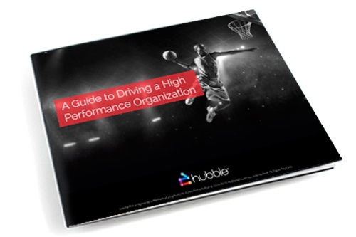 eBook image: A Guide to Driving a High Performance Organization