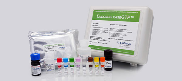 EndonucleaseGTP kit