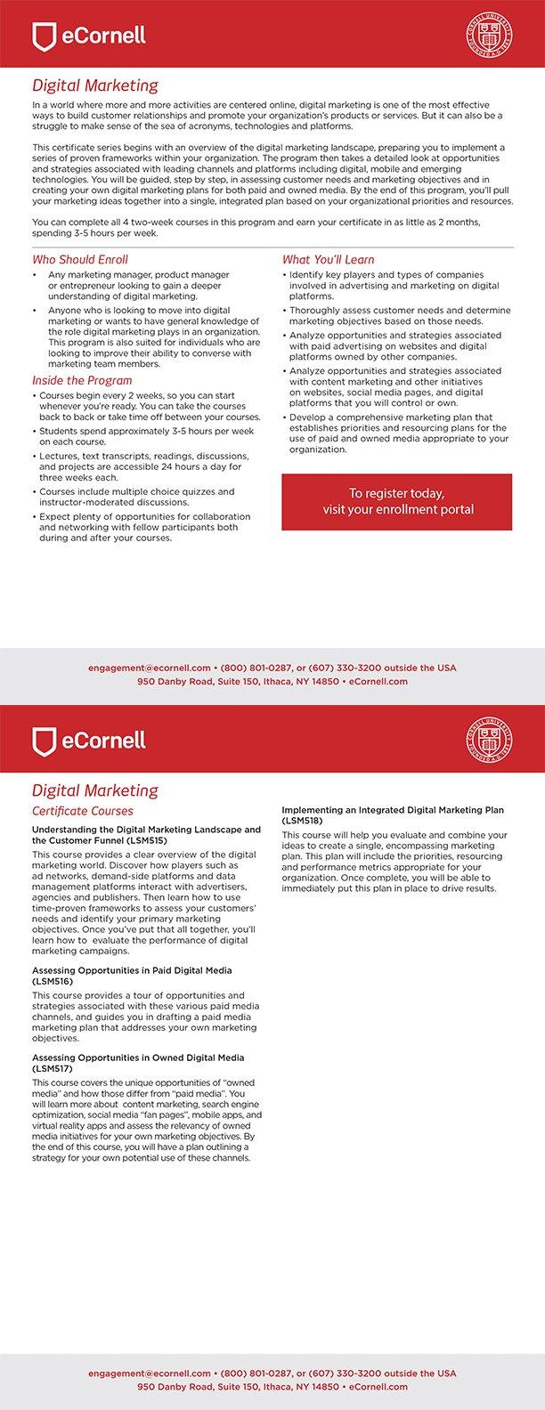 Digital Marketing Flyer for Corporations