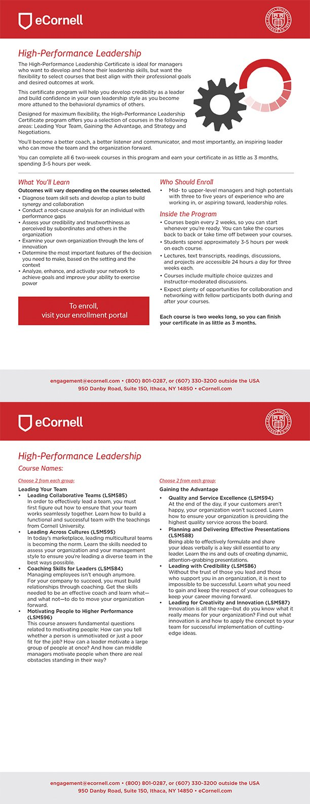 High-Performance Leadership Flyer for Corporations
