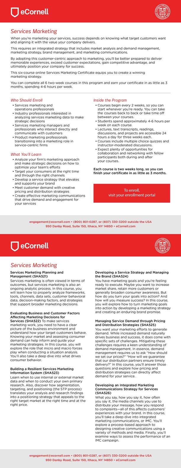 Services Marketing Flyer for Corporations