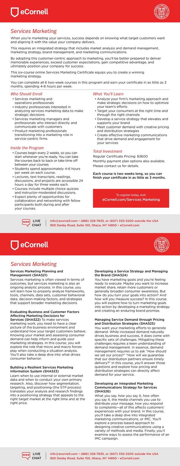 Services Marketing Flyer