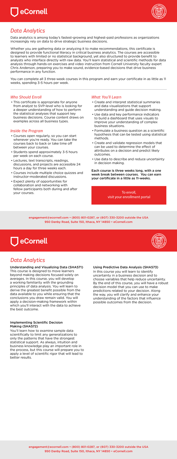 Data Analytics Flyer for Corporations