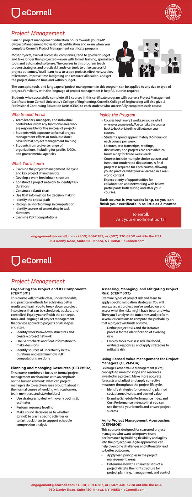Project Management Flyer for Corporations