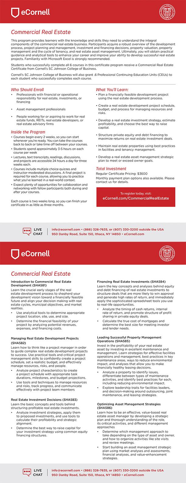Commercial Real Estate Flyer