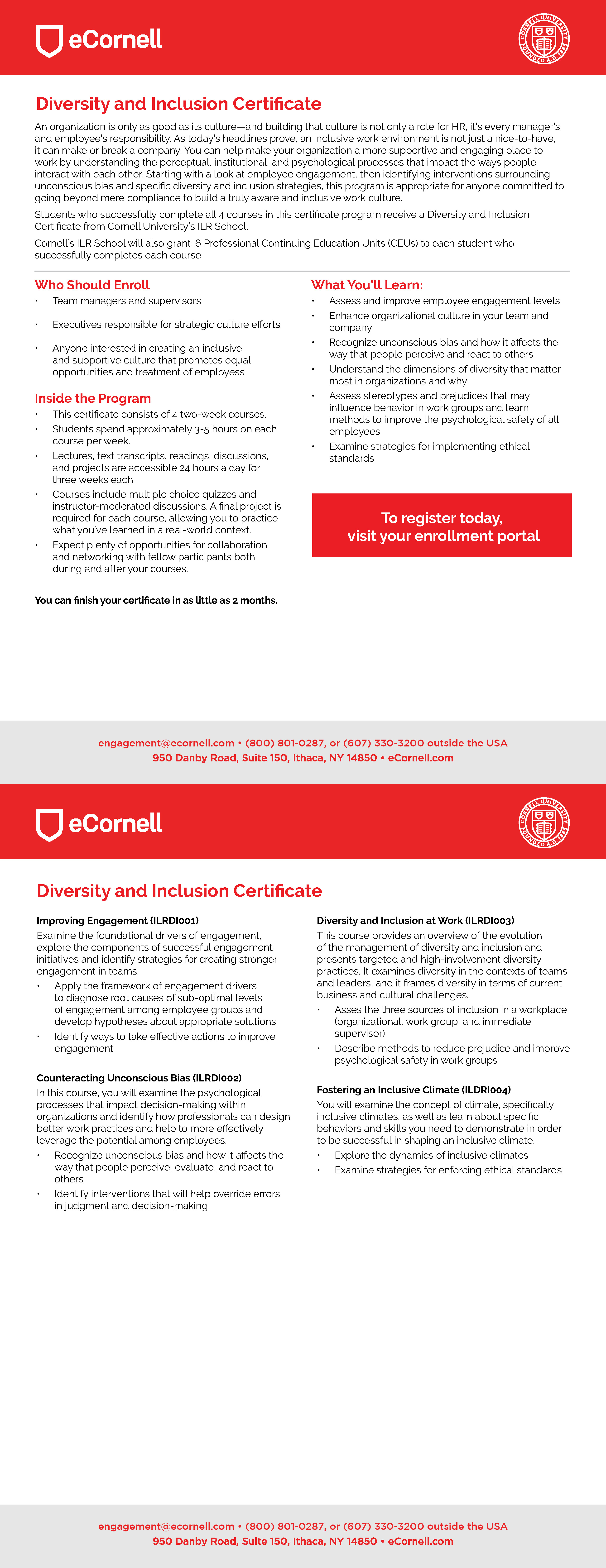 Diversity and Inclusion Flyer