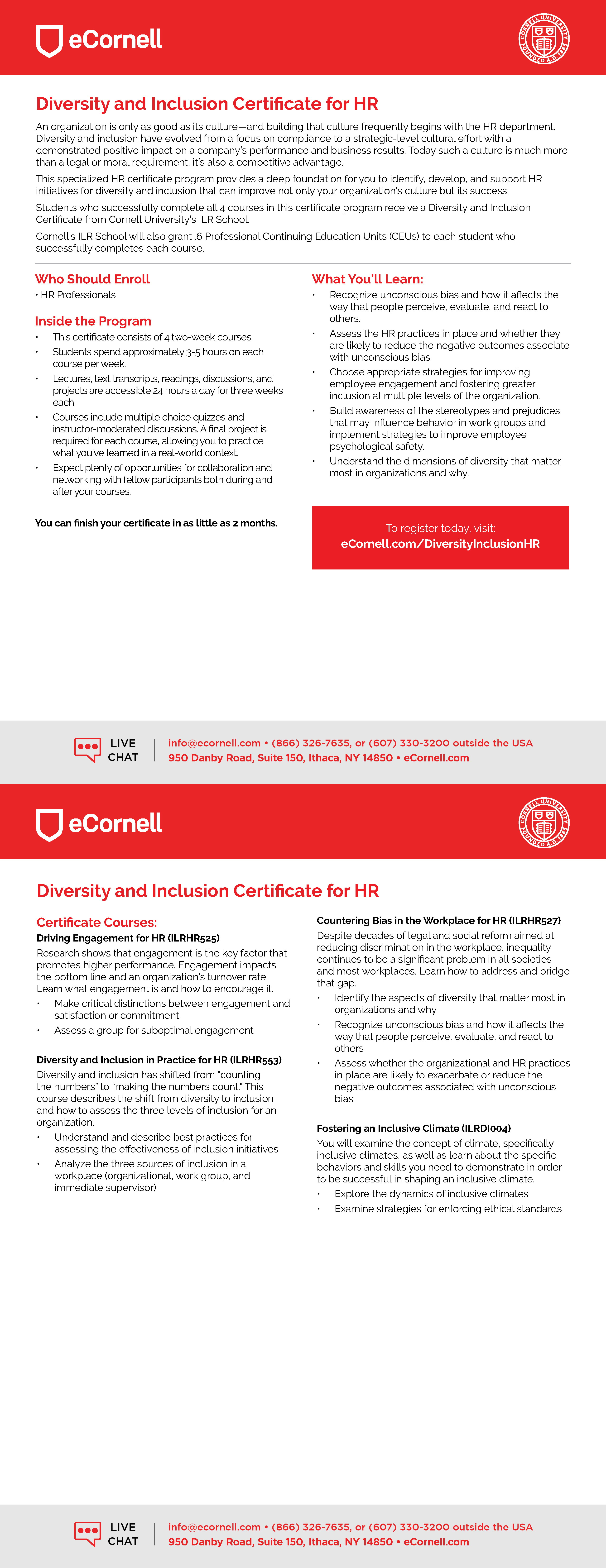 Diversity and Inclusion for HR Flyer