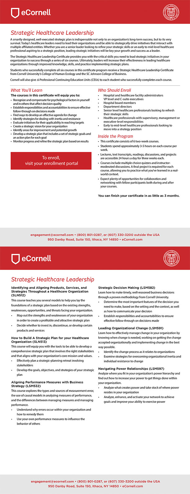 Strategic Healthcare Leadership Flyer for Corporations