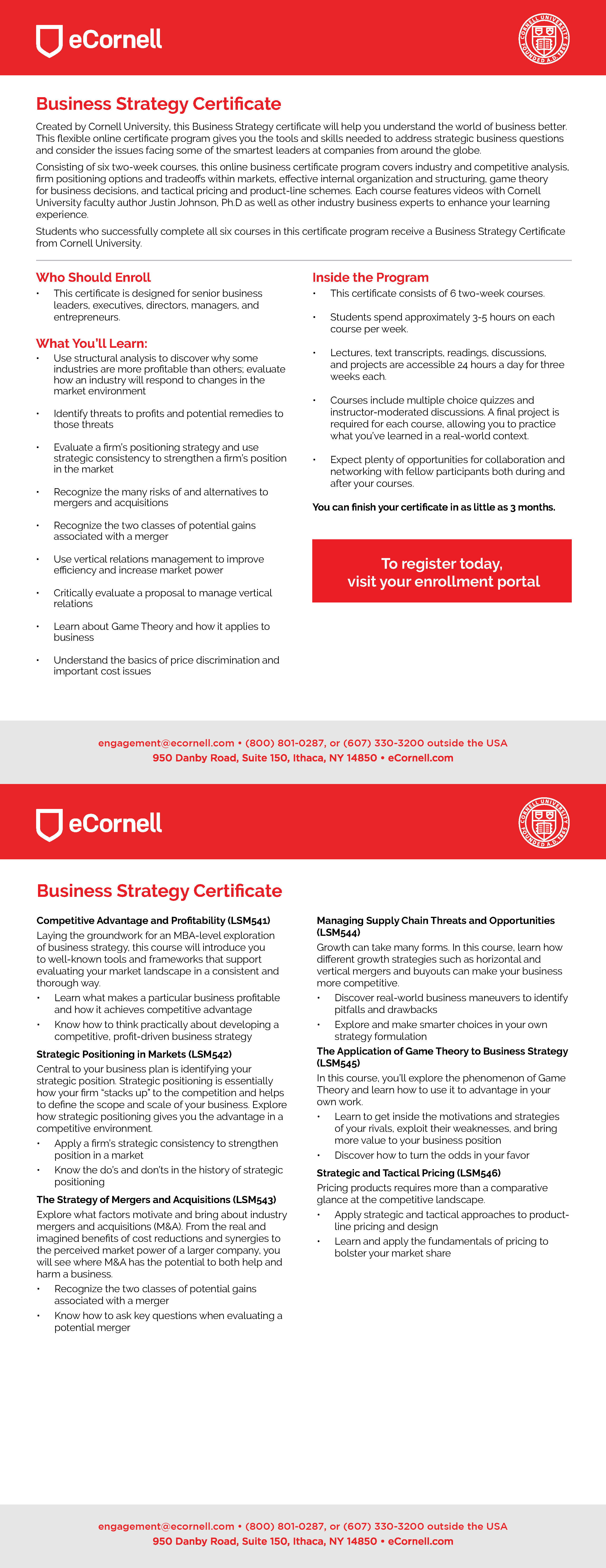 Business Strategy Flyer for Corporations