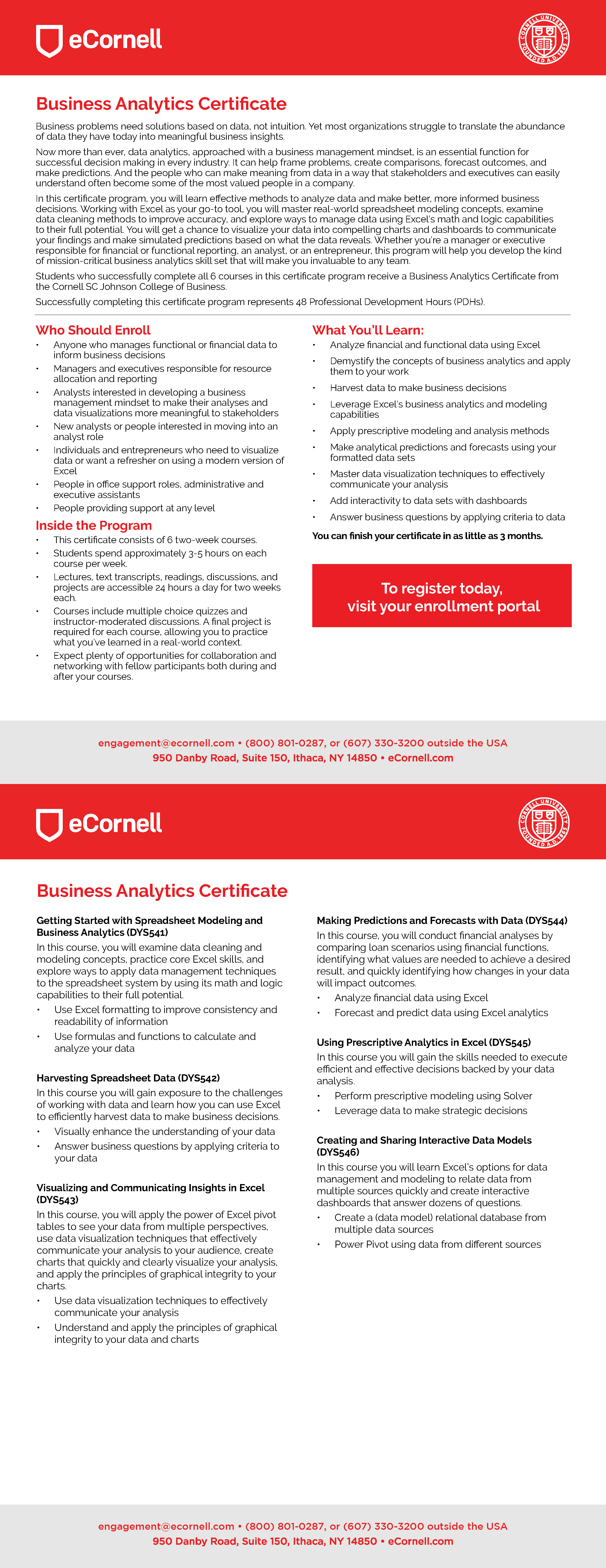 Business Analytics Flyer for Corporations