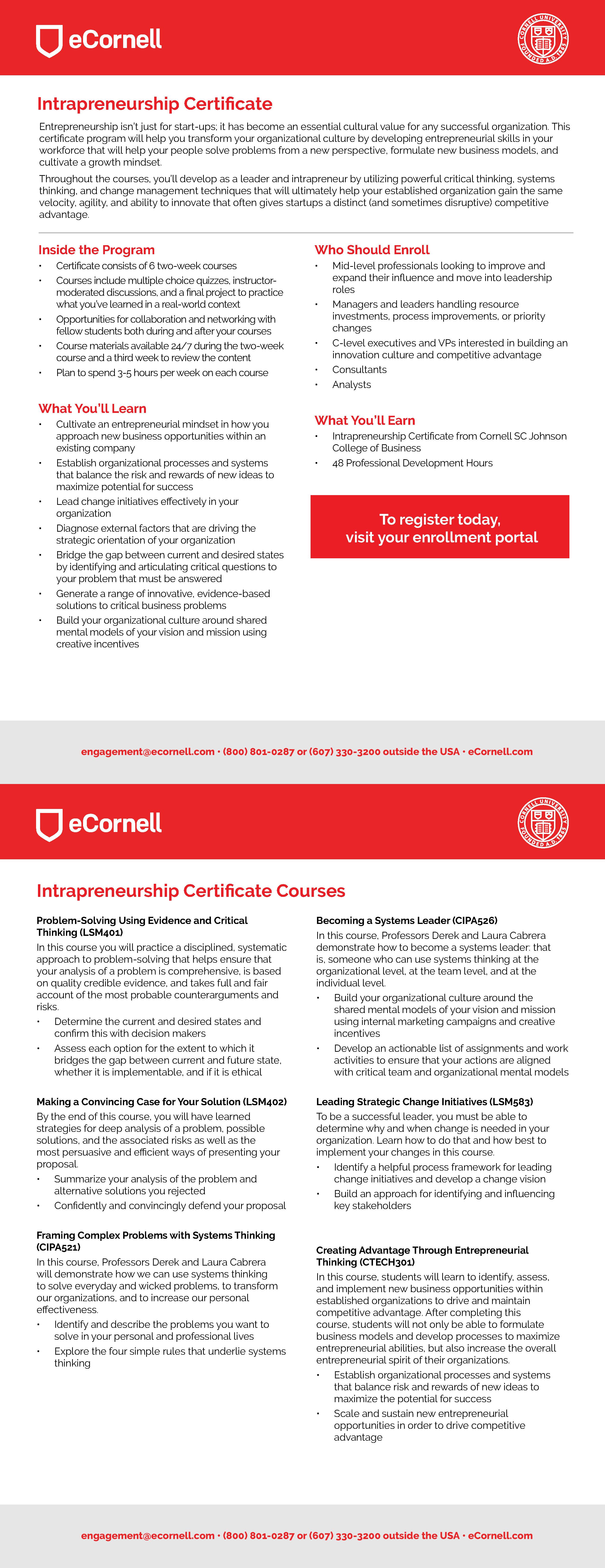 Intrapreneurship Flyer for Corporations