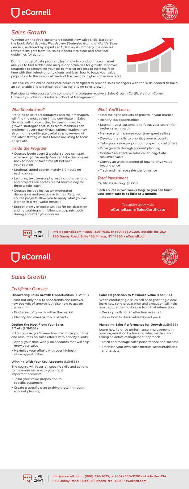 Sales Growth Flyer