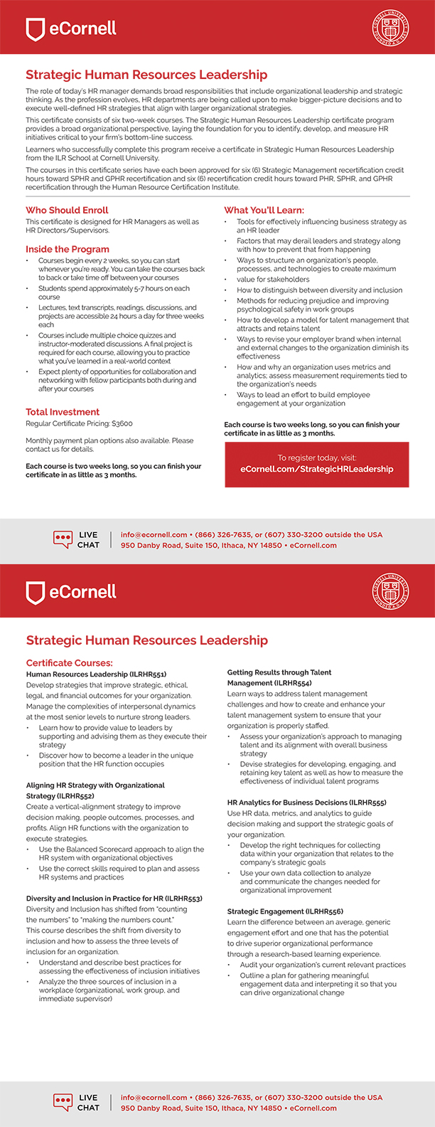 Strategic Human Resources Leadership Flyer