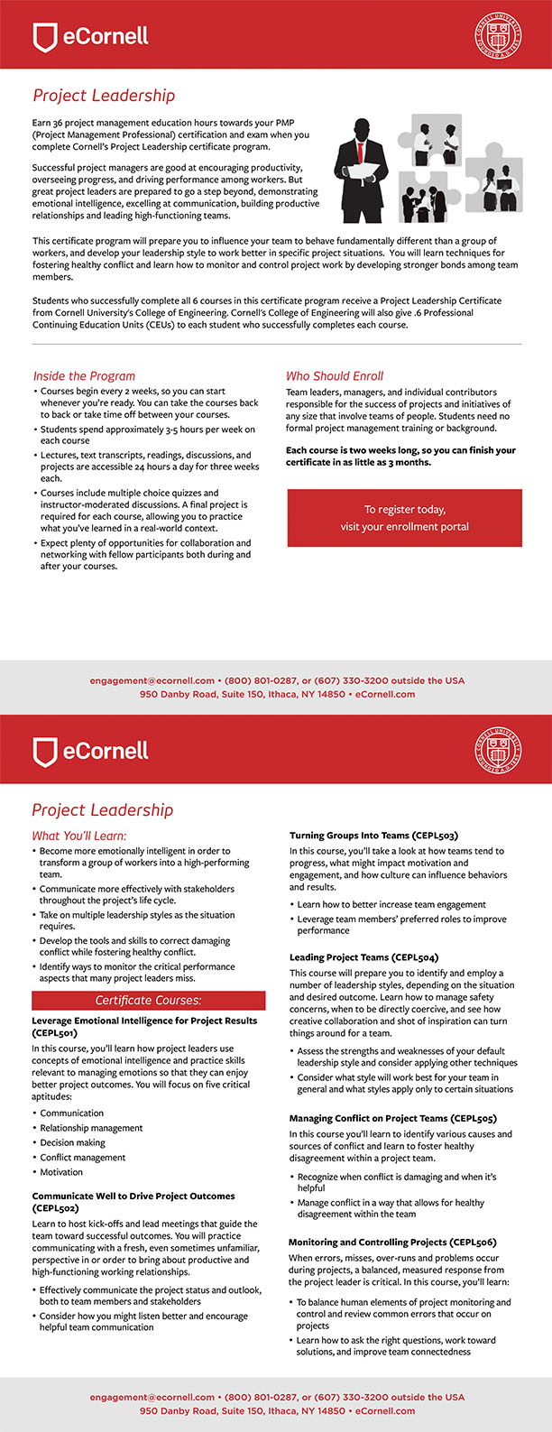 Project Leadership Flyer for Corporations