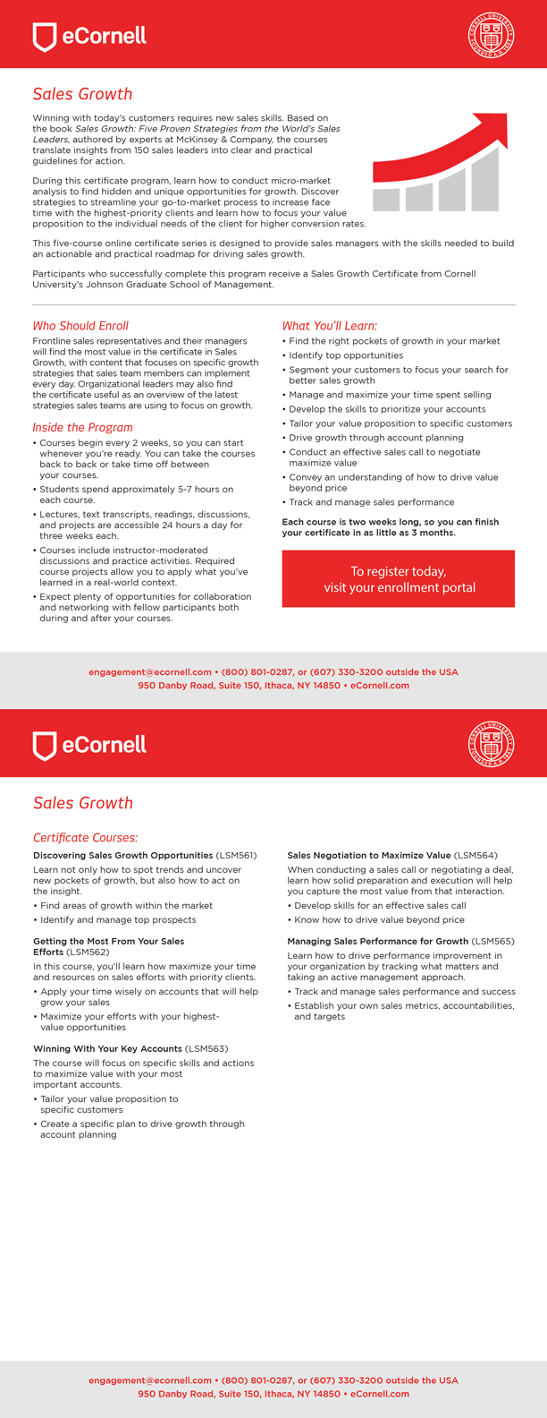 Sales Growth Flyers for Corporations