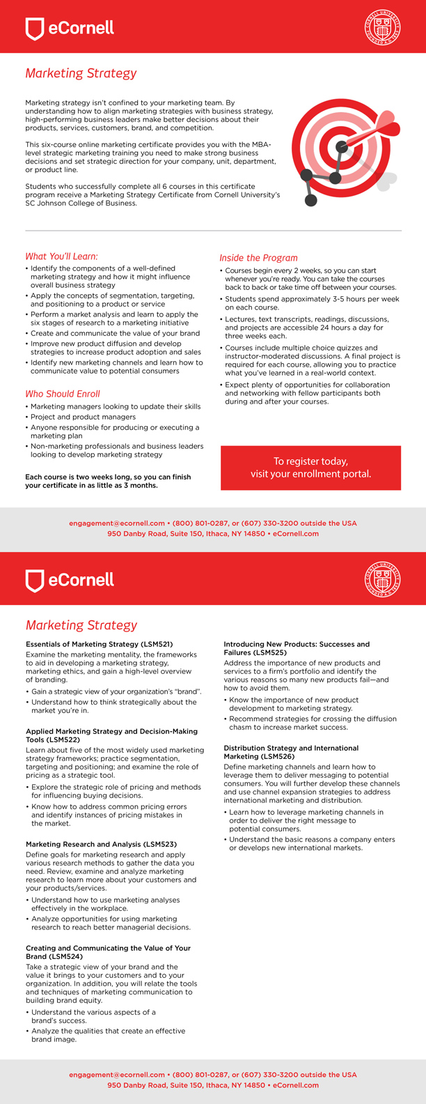 Marketing Strategy Flyer for Corporations