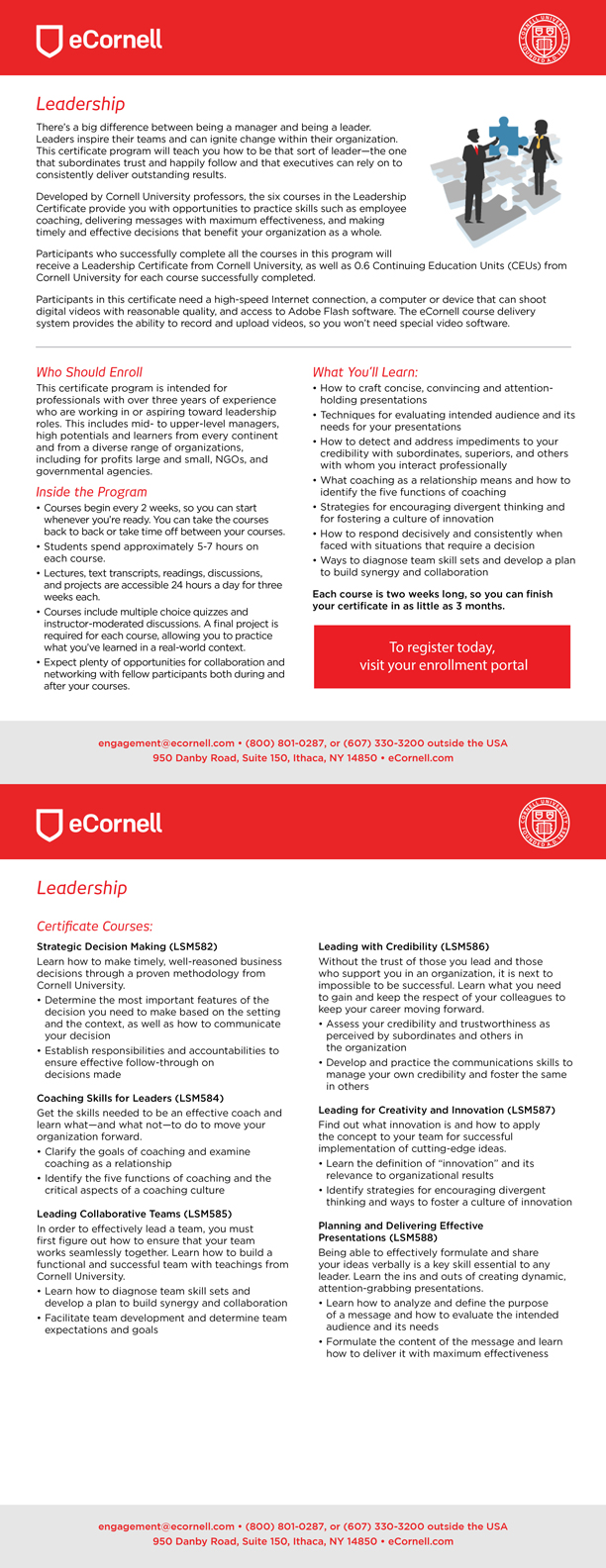Leadership Flyer for Corporations