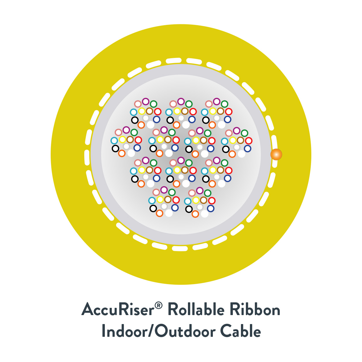 AccuRiser_Rollable_Ribbon_Cable