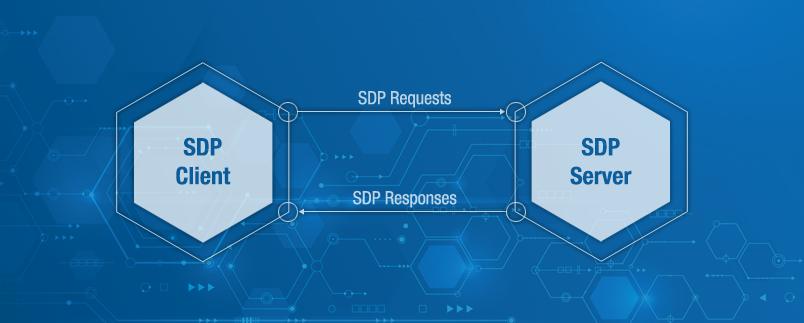 BSDP Webinar image.png