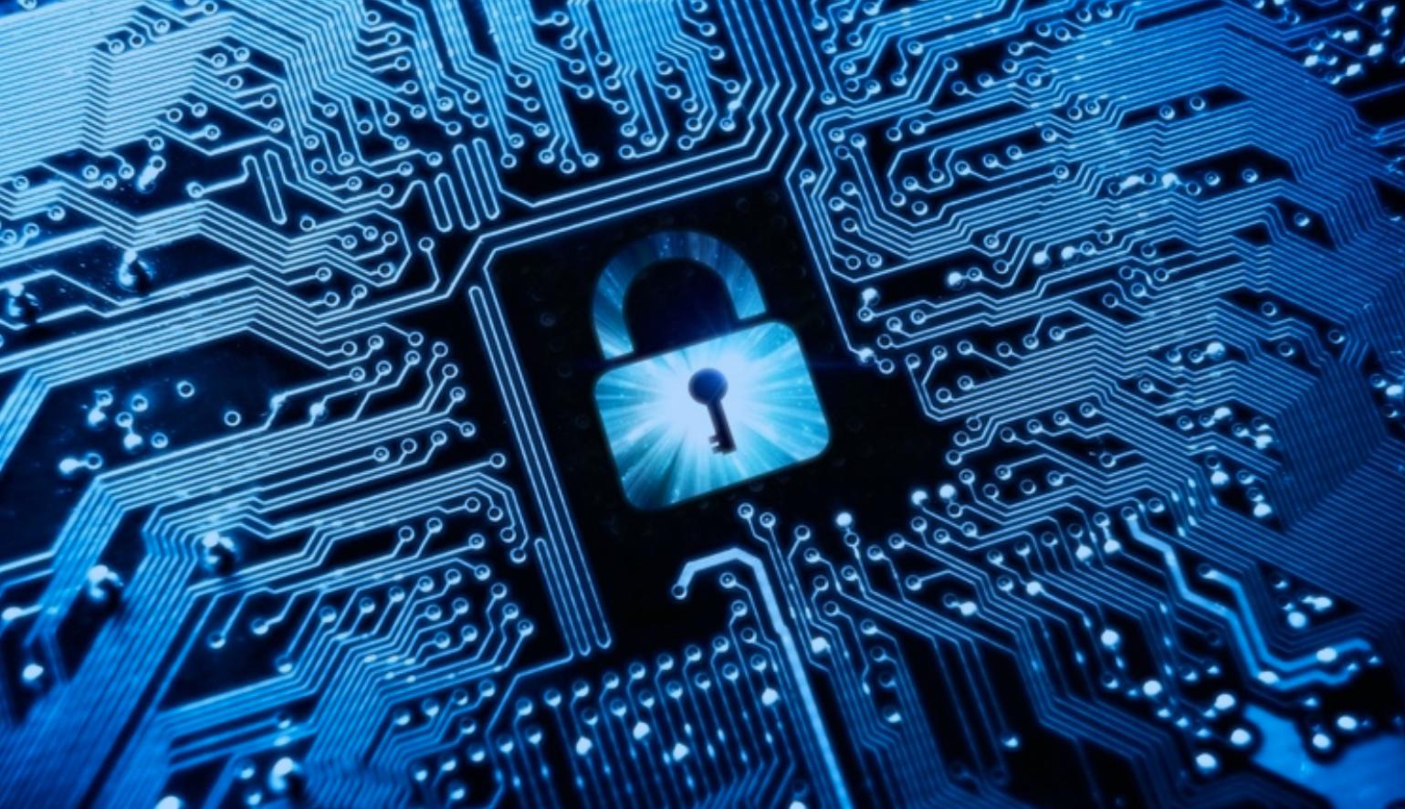 Secure Silicon Fingerprint white paper