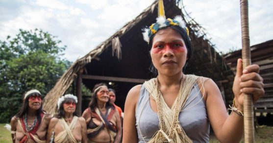 Nemonte Nenquimo with Waorani elders. Photo by Jeronimo Zuniga, Amazon Frontlines.
