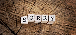 The word Sorry