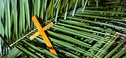 palm fronds with cross