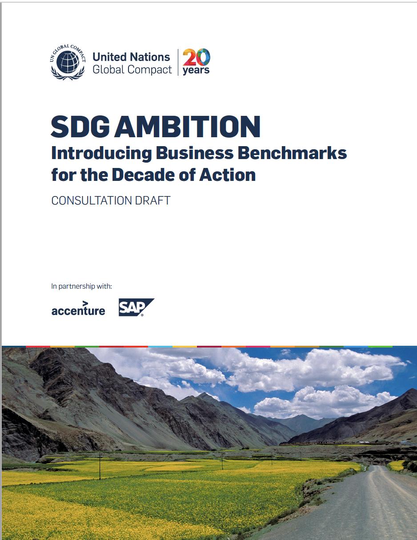 SDG Ambition